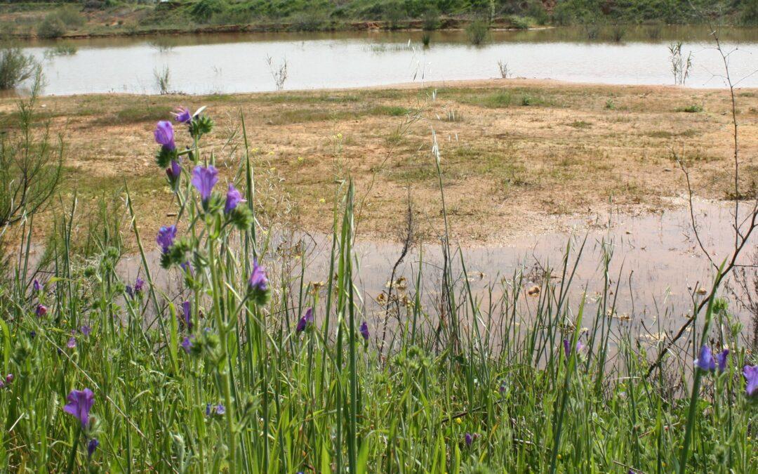 Laguna de La Mohedana