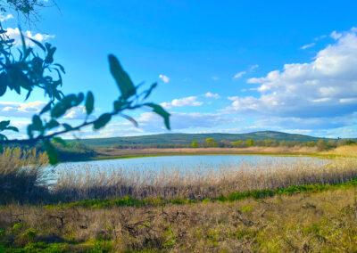Laguna del Rincón