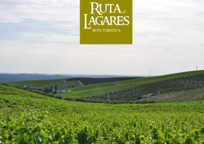 Ruta de Lagares de Montilla